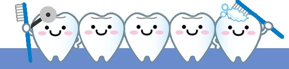 くれいし歯科の豆知識